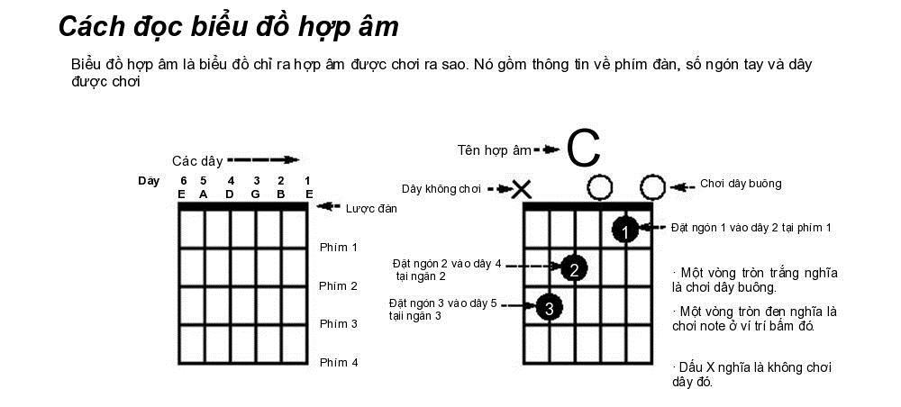 Cách học Hợp âm đàn Guitar cơ bản cho người mới học